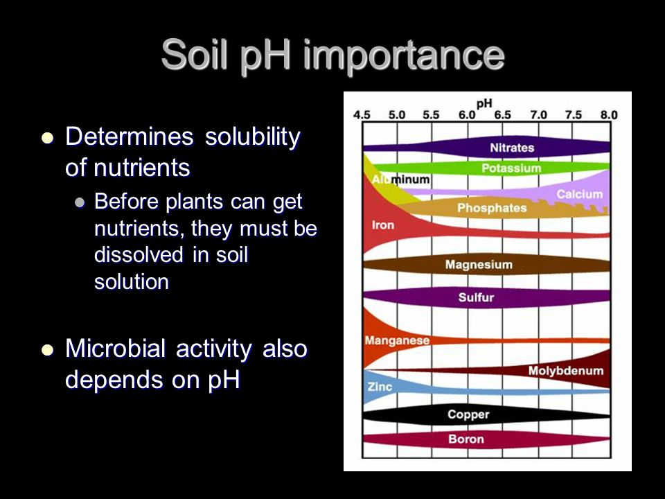 Soil pH importance Determines solubility of nutrients