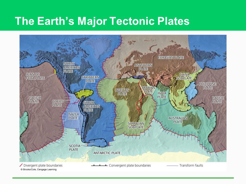 The Earth's Major Tectonic Plates