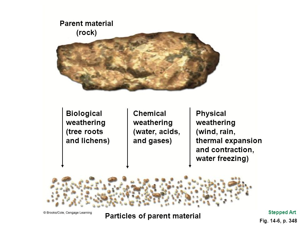 Parent material (rock)