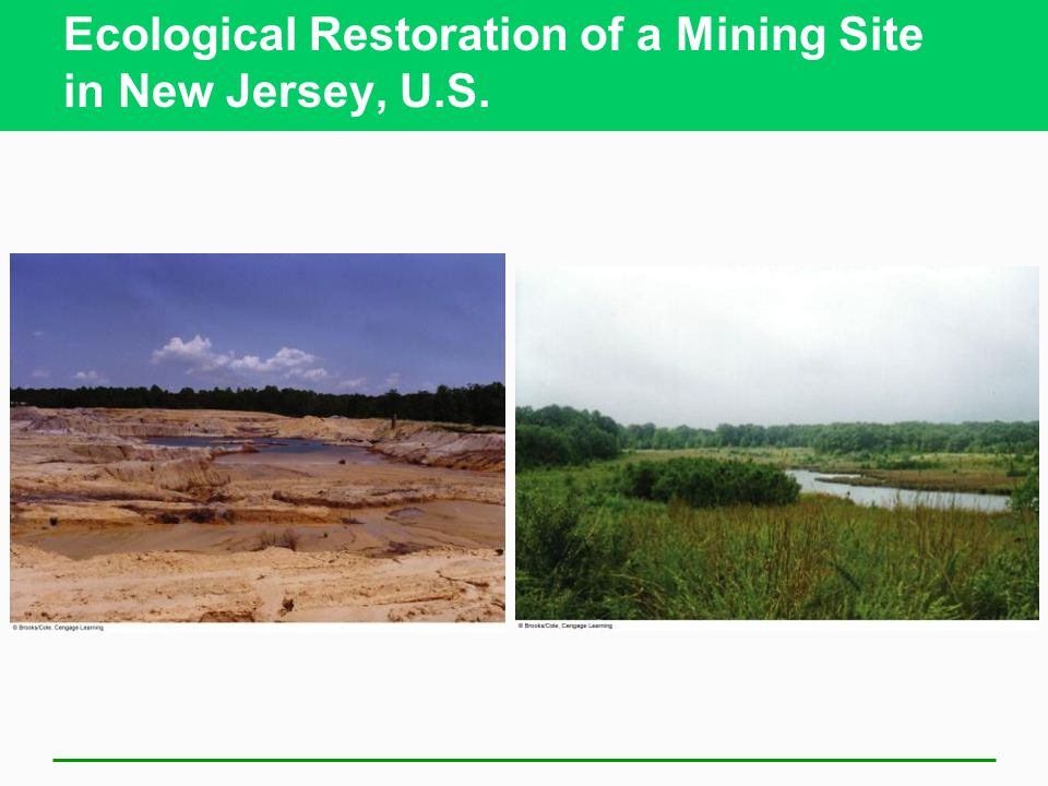 Ecological Restoration of a Mining Site in New Jersey, U.S.