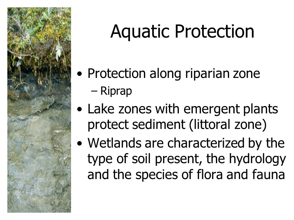 Aquatic Protection Protection along riparian zone