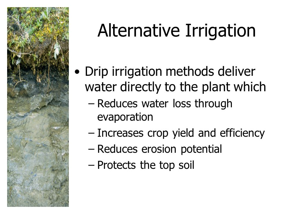 Alternative Irrigation