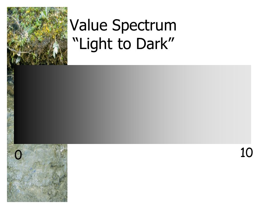Value Spectrum Light to Dark