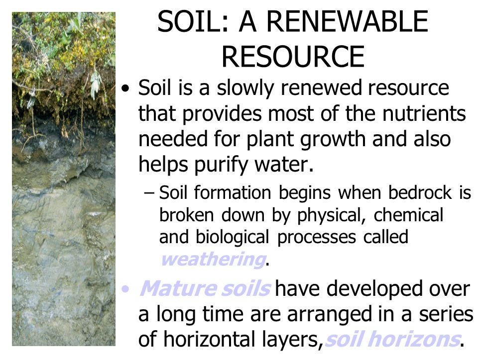SOIL: A RENEWABLE RESOURCE