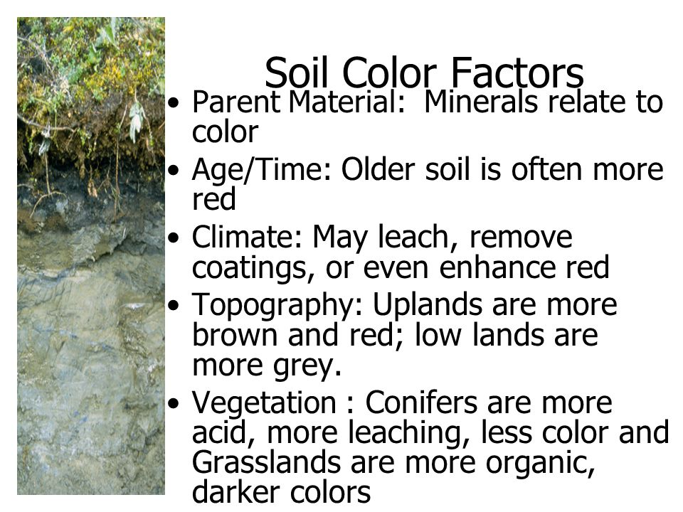 Soil Color Factors Parent Material: Minerals relate to color