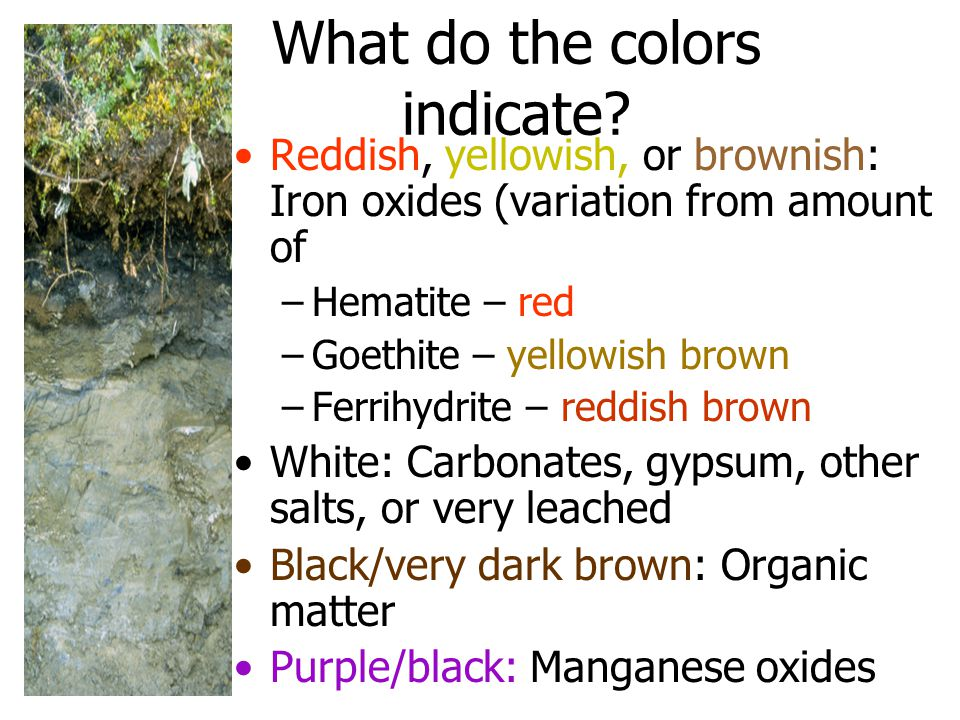 What do the colors indicate