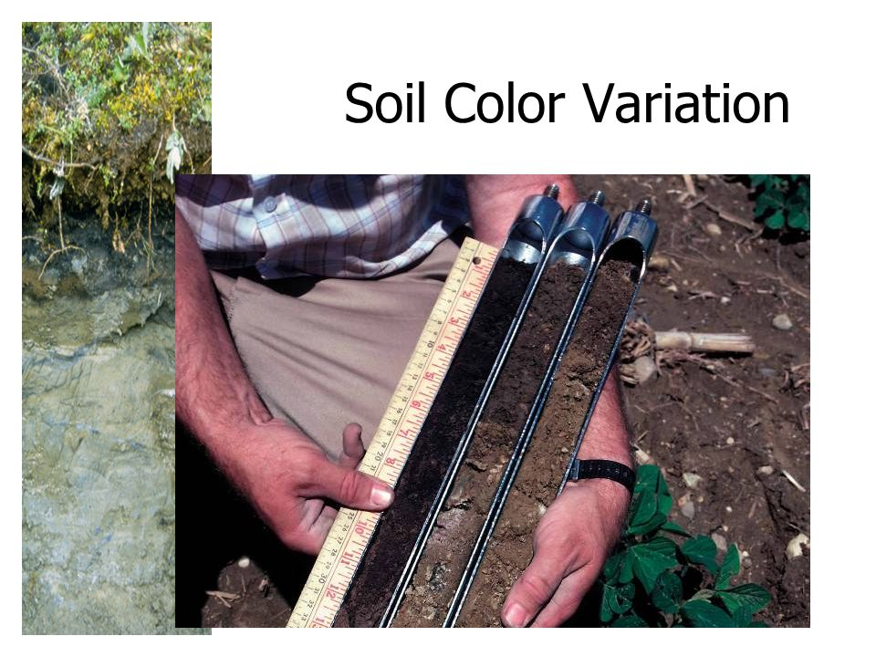 Soil Color Variation