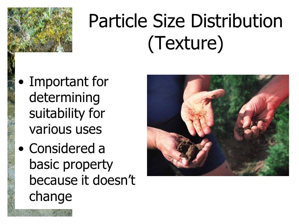 Particle Size Distribution (Texture)