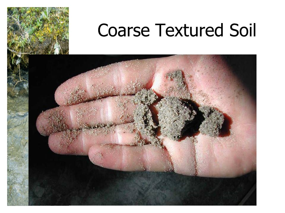 Coarse Textured Soil