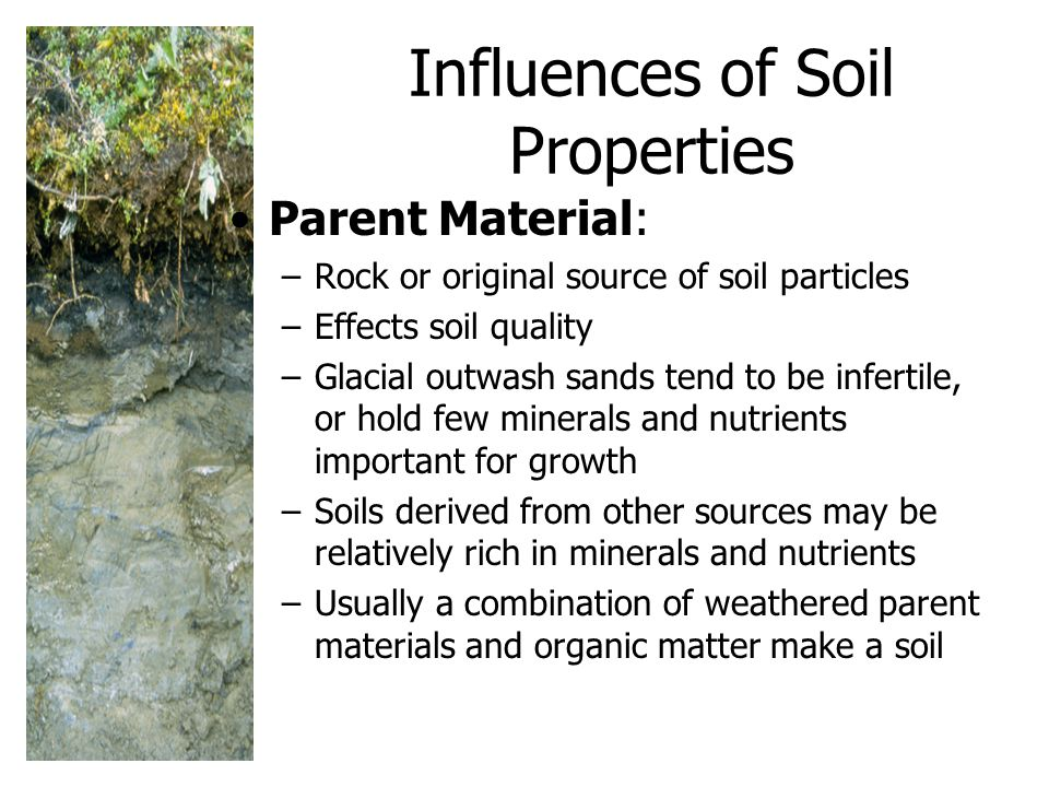 Influences of Soil Properties