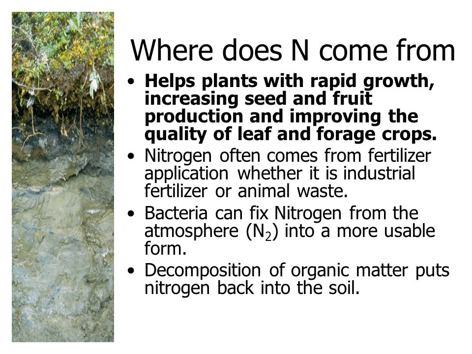Where does N come from Helps plants with rapid growth, increasing seed and fruit production and improving the quality of leaf and forage crops.
