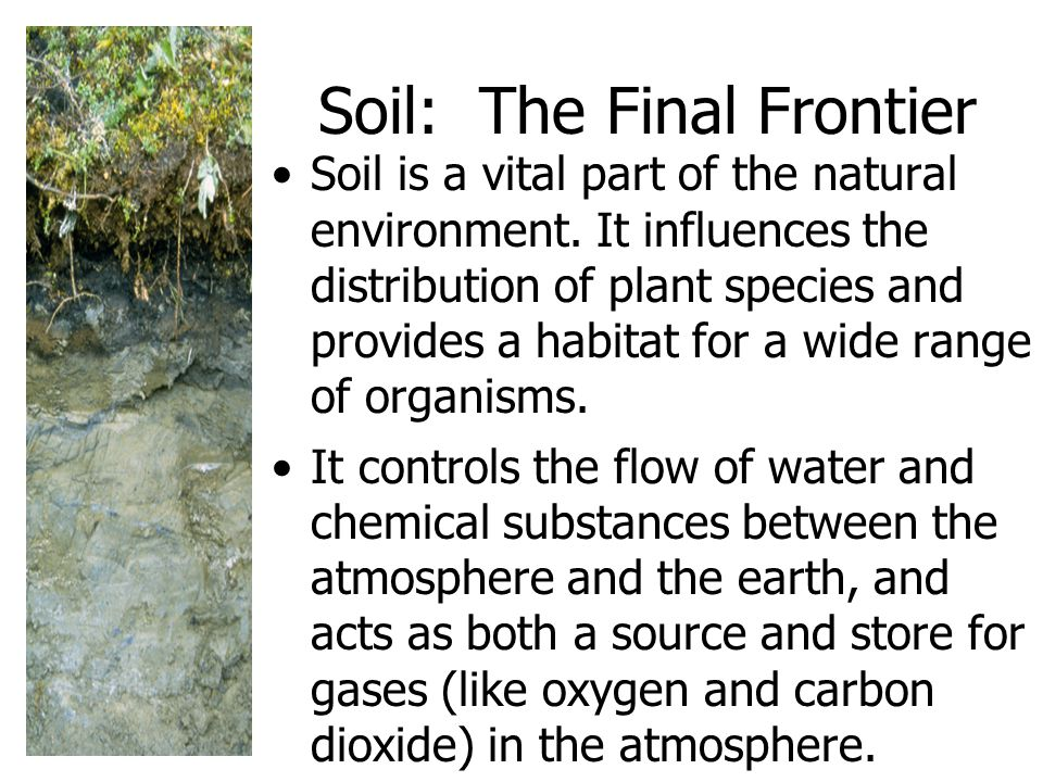 Soil: The Final Frontier