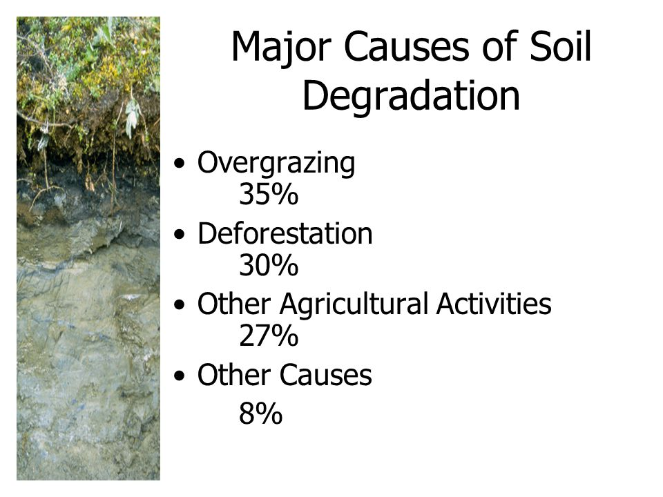 Major Causes of Soil Degradation