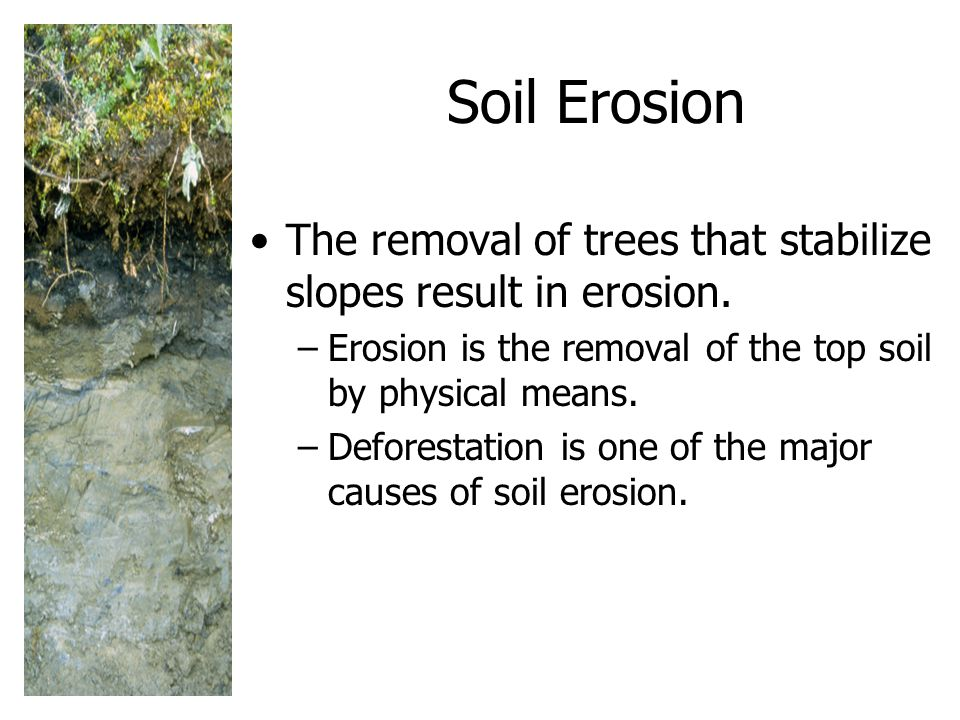 Soil Erosion The removal of trees that stabilize slopes result in erosion. Erosion is the removal of the top soil by physical means.