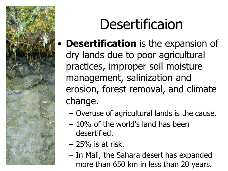 Desertificaion