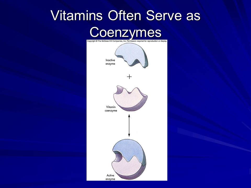Vitamins Often Serve as Coenzymes