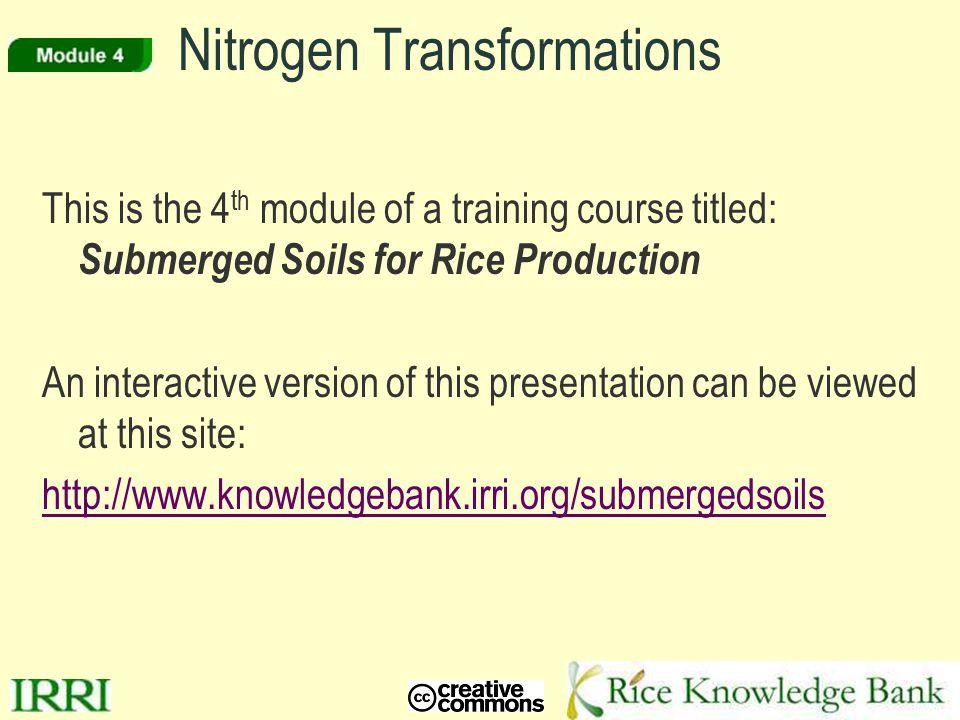 Nitrogen Transformations