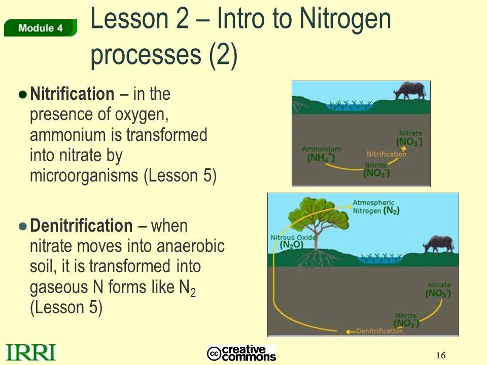 Lesson 2 – Intro to Nitrogen processes (2)