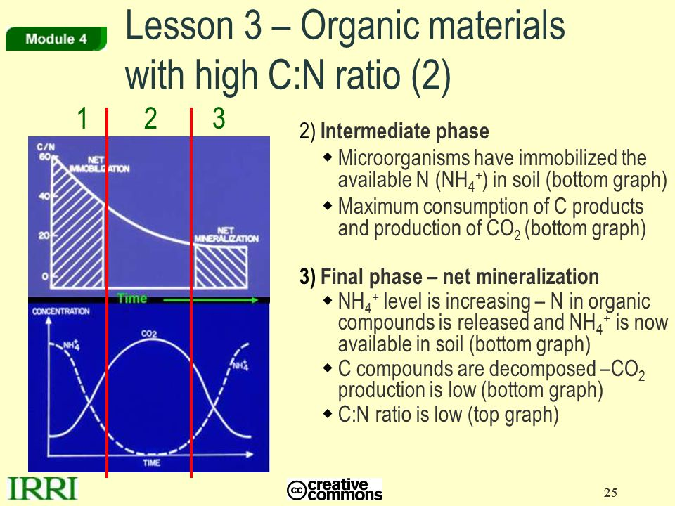 Lesson 3 – Organic materials with high C:N ratio (2)