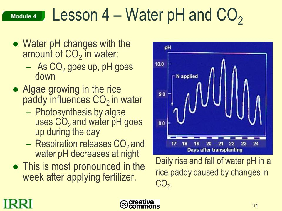 Lesson 4 – Water pH and CO2 Water pH changes with the amount of CO2 in water: As CO2 goes up, pH goes down.