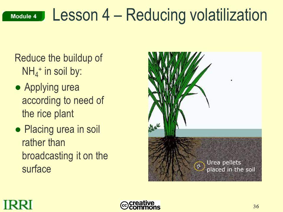 Lesson 4 – Reducing volatilization