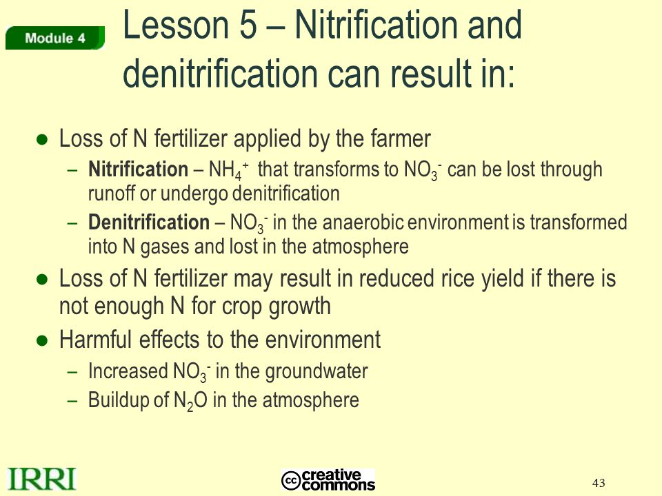 Lesson 5 – Nitrification and denitrification can result in: