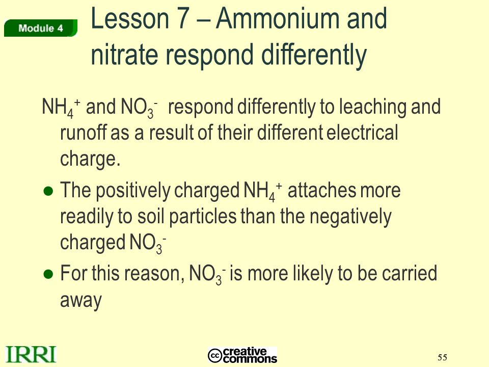 Lesson 7 – Ammonium and nitrate respond differently