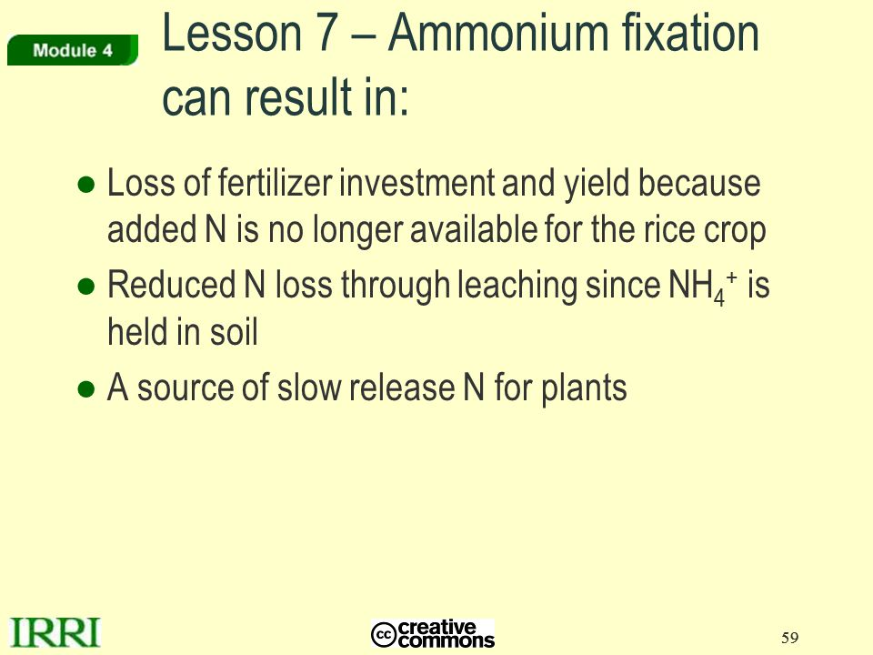 Lesson 7 – Ammonium fixation can result in:
