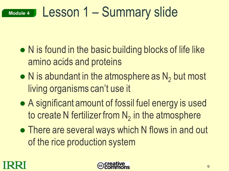 Lesson 1 – Summary slide N is found in the basic building blocks of life like amino acids and proteins.