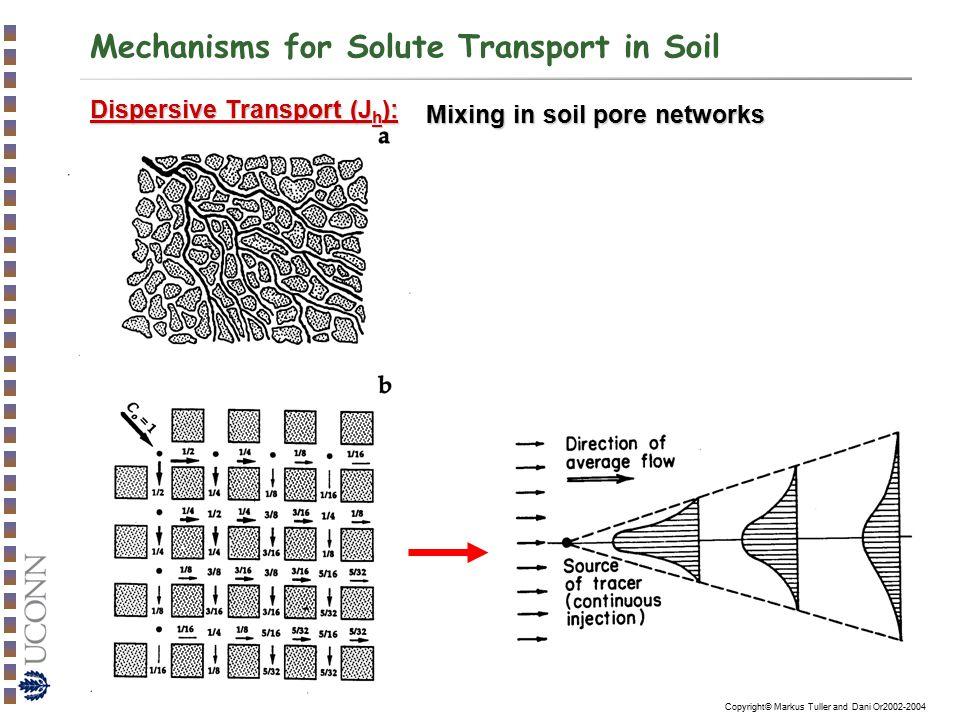 Mechanisms for Solute Transport in Soil
