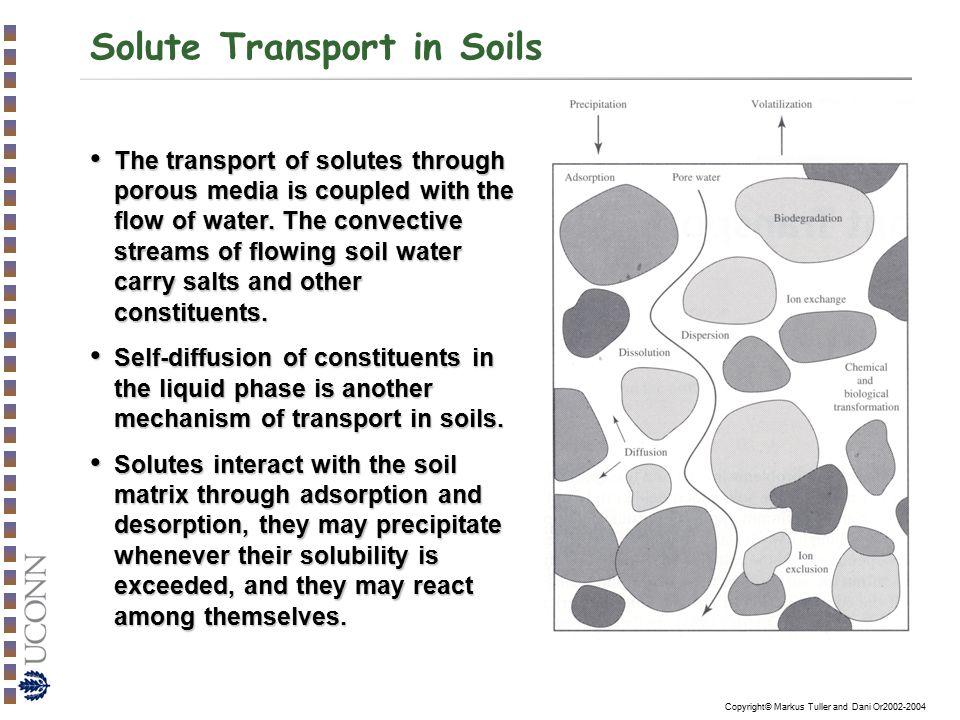 transport in porous media pdf