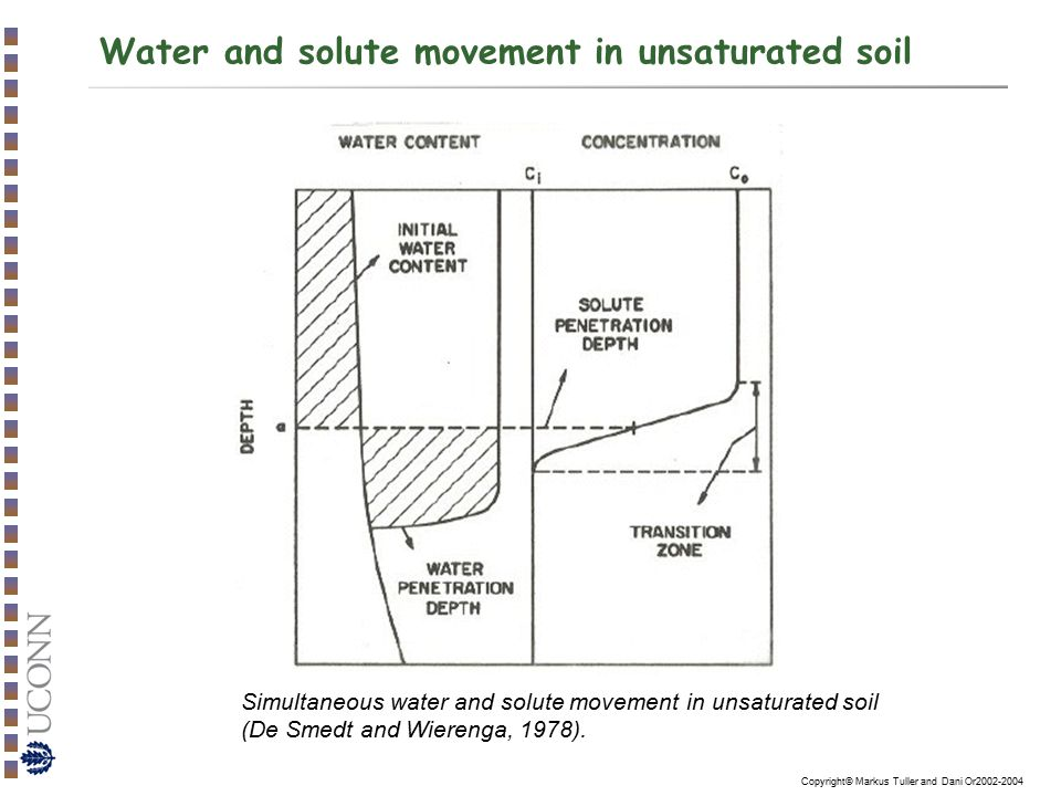 Water and solute movement in unsaturated soil