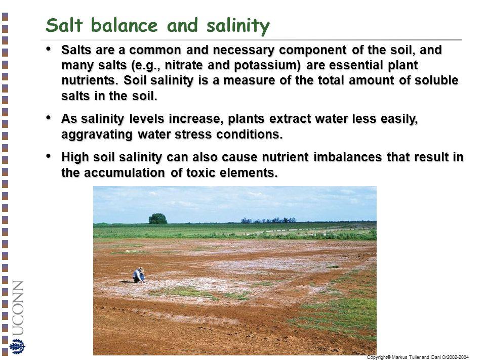 Salt balance and salinity