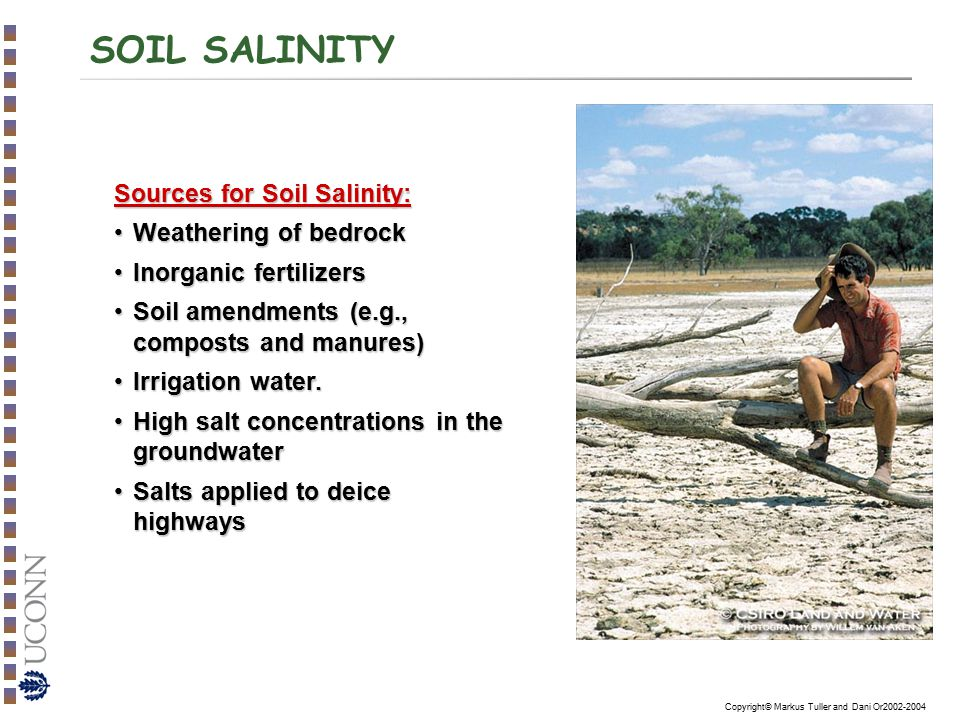 SOIL SALINITY Sources for Soil Salinity: Weathering of bedrock