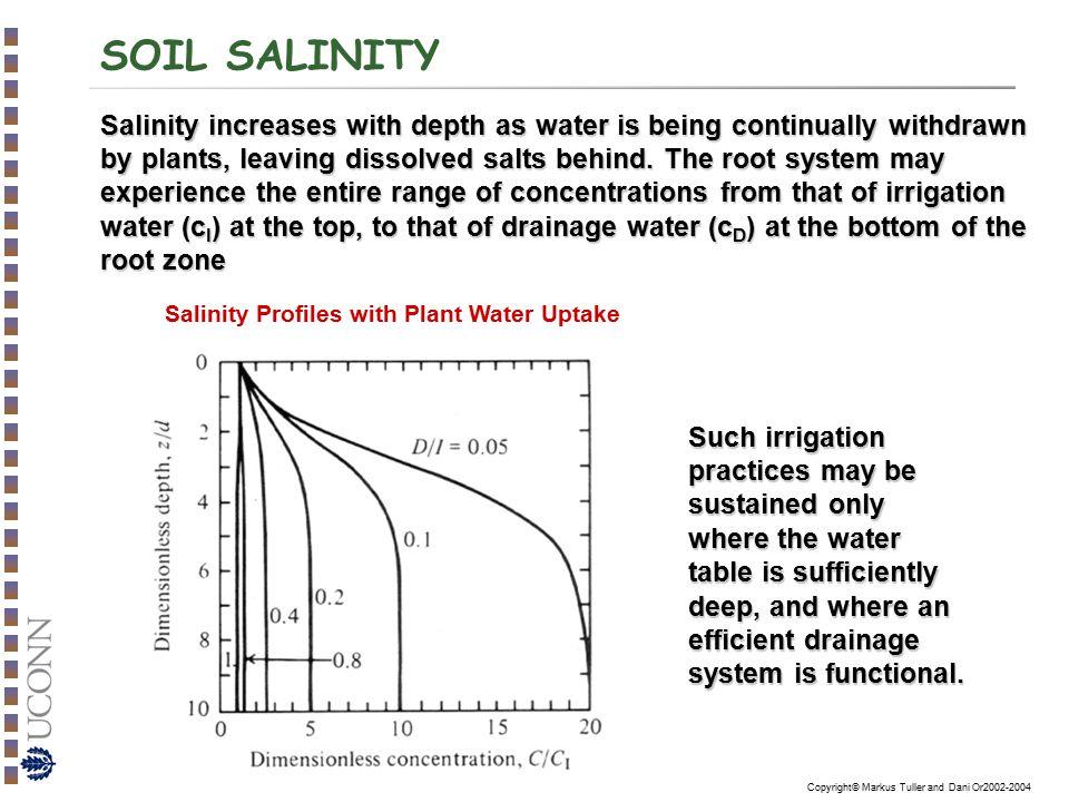 Salinity Profiles with Plant Water Uptake