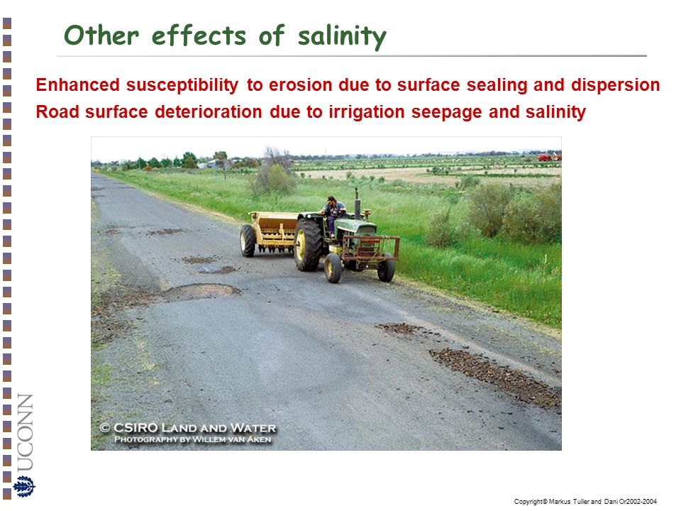 Other effects of salinity