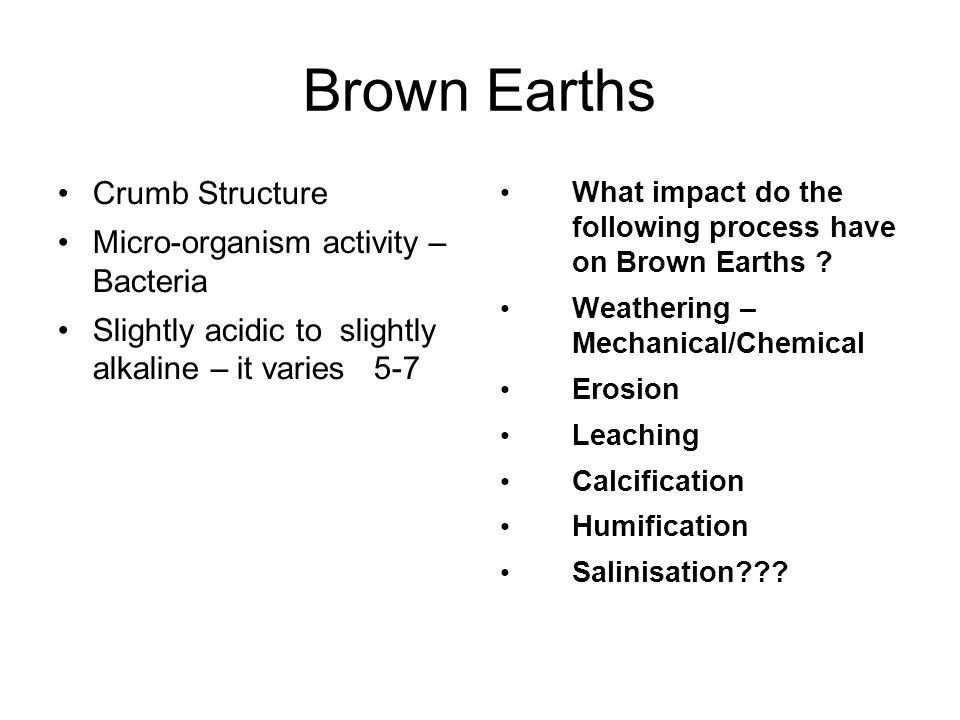 Brown Earths Crumb Structure Micro-organism activity – Bacteria