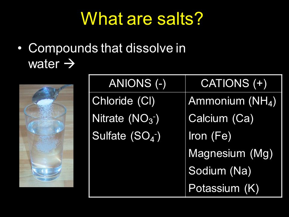 What are salts Compounds that dissolve in water  ANIONS (-)