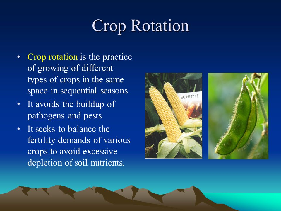 Crop Rotation Crop rotation is the practice of growing of different types of crops in the same space in sequential seasons.