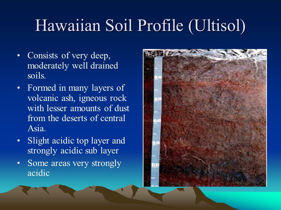 Hawaiian Soil Profile (Ultisol)