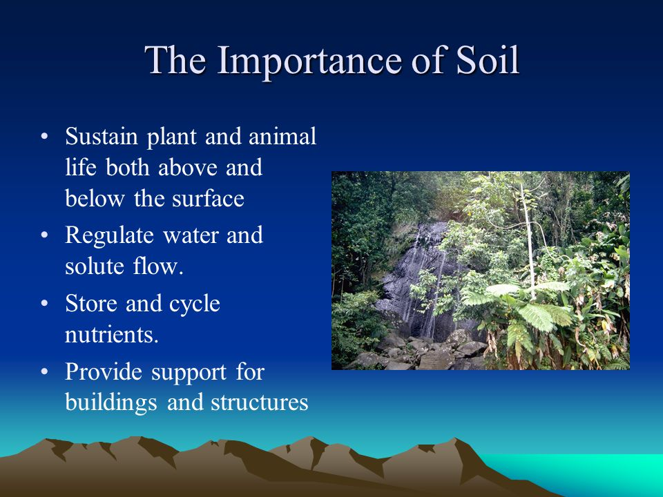 the importance of soil quality and conservation Key-words: conservation agriculture soil quality land use and management  it  is important to care for the earth, not only because of utilitarian, productive or.