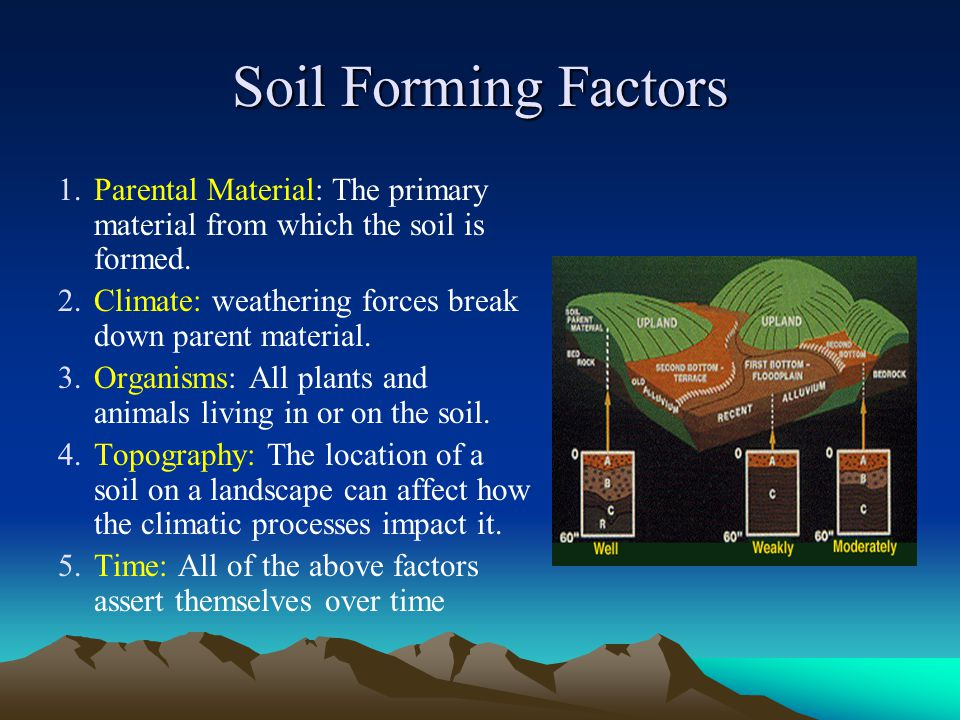 Formation and characteristics of hawaii s soils ppt for Soil forming factors