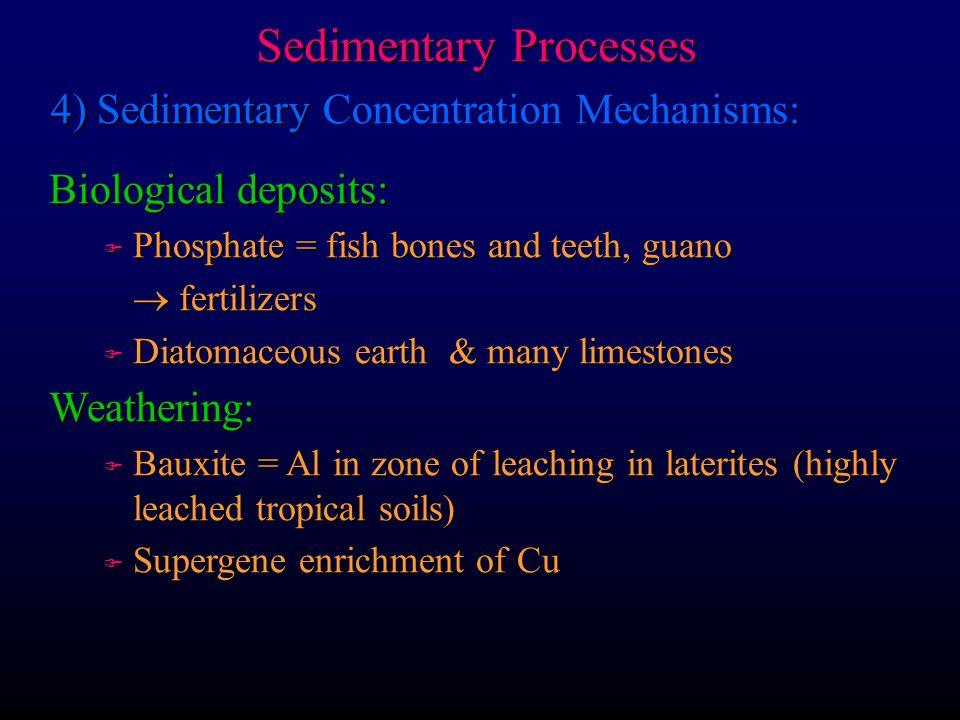 Sedimentary Processes