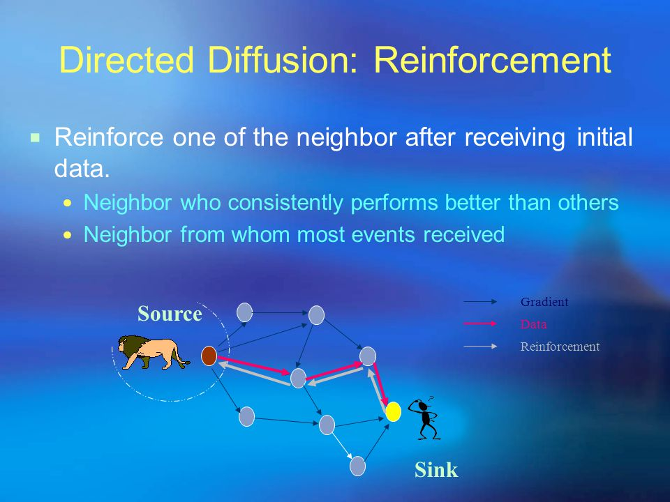 Directed Diffusion: Reinforcement