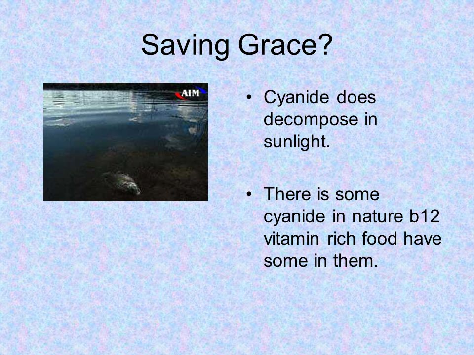 Saving Grace Cyanide does decompose in sunlight.