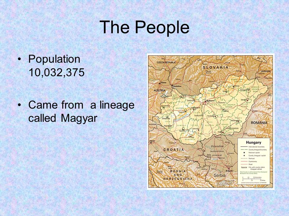 The People Population 10,032,375 Came from a lineage called Magyar