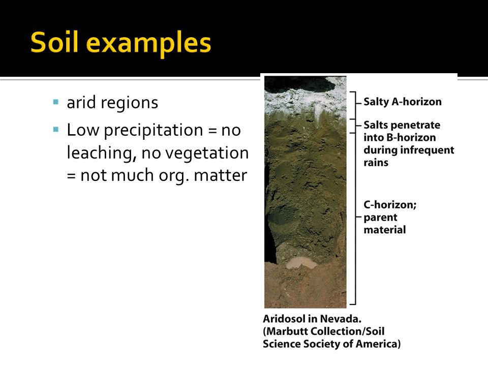 chapter 14 soil resources ppt video online download