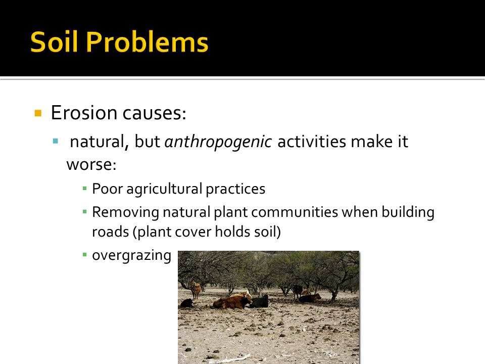 Soil Problems Erosion causes: