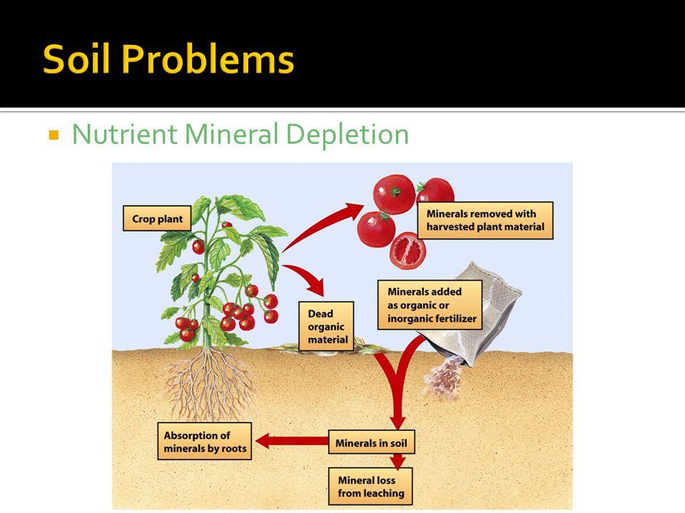 Soil Problems Nutrient Mineral Depletion