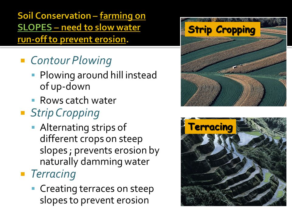 Contour Plowing Strip Cropping Terracing